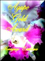 Agape Gold Award for Family Oriented Pages